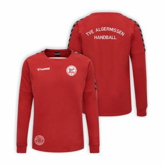 TVE Algermissen hummel Training Sweat Kids